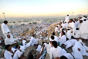 وحدت و ایثارگری نتیجه تدبر در مسائل حج و عید قربان