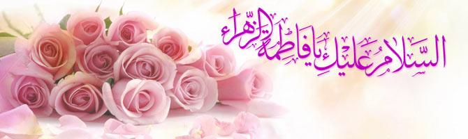 الگوی زن مسلمان، عرصه فعالیت بانوان