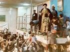 حق انتخاب و حق انتقاد مردم در حکومت اسلامی