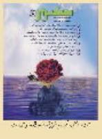 آیت الله العظمی صانعی: تمام حقوق بشر در فرمان 8 ماده ای آمده است