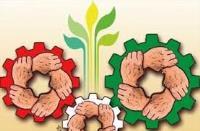 توسعه، فرهنگ و دیدگاههای امام خمینی(س)