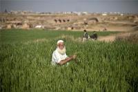 چگونگی تقسیم زمین موروثی حضرت امام بین فقرا و مستمندان شهرستان خمین