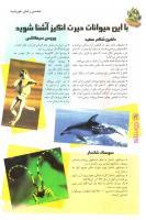 مجله نوجوان 84 صفحه 12
