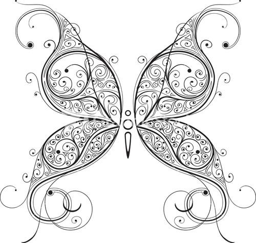 vector-butterfly_My_g6dU__S