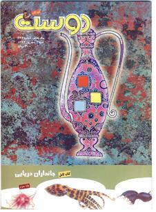مجله کودک 348
