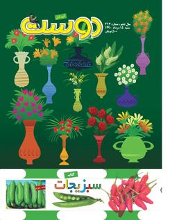 مجله کودک 493